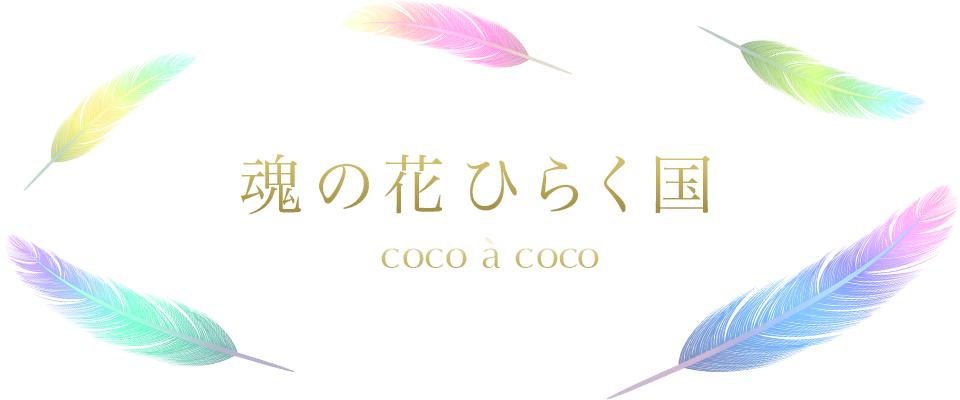 魂の花ひらく国 coco à coco|光輝く未来へ~ソウルクリアリングとシャーマン・ヒーリング